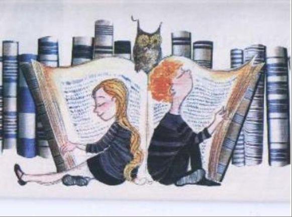 Dica Gentil – Bibliotecas